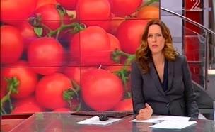 עלייה חדה במחירי העגבניות