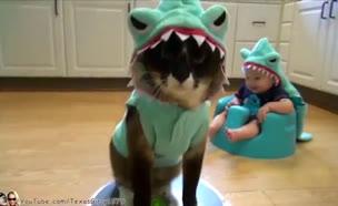 ילד, כריש, כלב, רובוט (תמונת AVI: יוטיוב  ,יוטיוב)